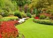 Barvy na zahrade 1
