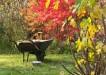 i podzimni zahrada muze byt krasna 1