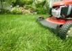 Znate typy travnich smesi 1